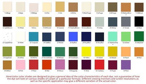 Dyeing Carpet With Rit Dye by Safe To Dye Game Google Family Feud