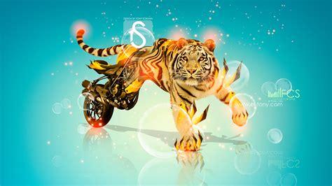 moto fantasy tiger ducati streetfighter  hd wallpapers