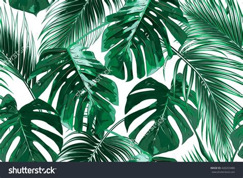 Palm Background Tropical Palm Leaves Jungle Leaves Seamless Vector Floral