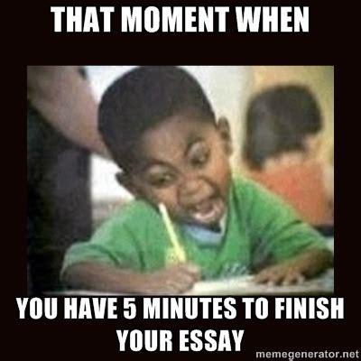 Essay Memes - memes somethingfunnyandwitty