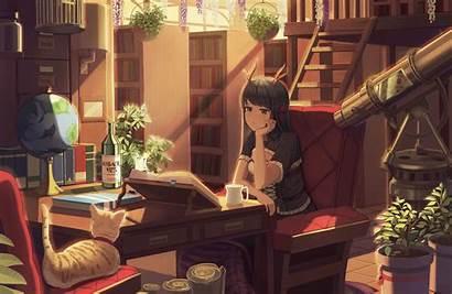 Studying Anime Library Wallpapers Study Books Neko
