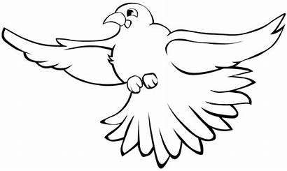 Bird Coloring Pages Birds Preschool Flying Activities