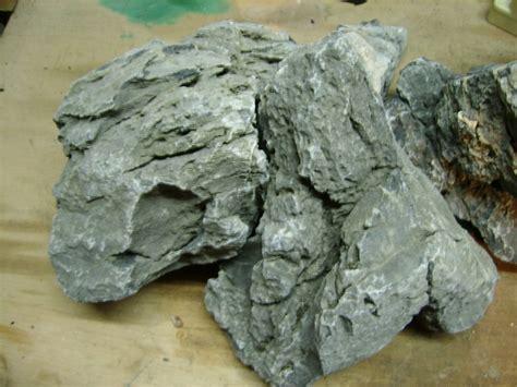 roche pour cichlid 233