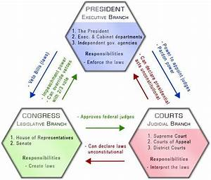 Branches Of Government Diagram  Color