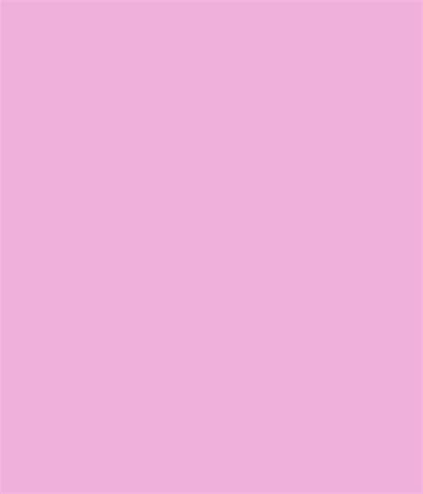 asian paints colour codes premium emulsion buy asian paints apcolite premium emulsion muted scarlet