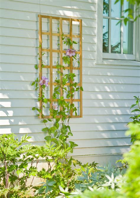 Buy Trellis by Teak Trellises Wall Trellises Gardener S Supply