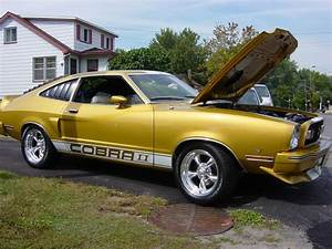 1976 Ford Mustang - Pictures - CarGurus | Ford mustang, Ford mustang cobra, Mustang cobra