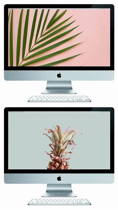 Desktop Wallpapers Summer Background Backgrounds Pastel Pink