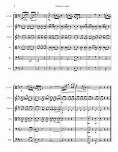 Chopin Prelude In B Minor Sheet Music Pdf Download