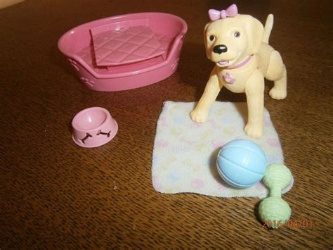 images  barbie cats  dogs animal love