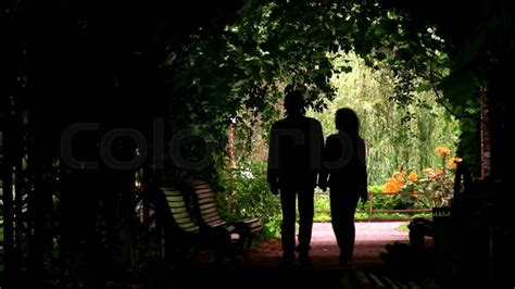 couple silhouette  plant tunnel stock video colourbox