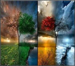 21 best All Four Seasons images on Pinterest