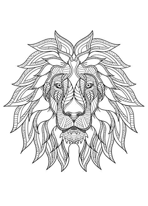 lion   color  children lion kids coloring pages