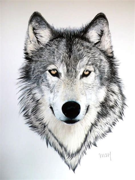 Native American Animal Tattoos – 30 Grand Native American Tattoos   CreativeFan