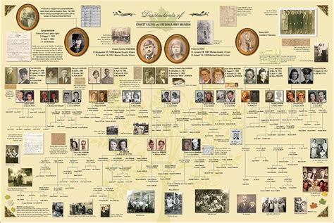 family tree book template family history book templates images