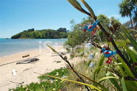 Kiwiana Christmas, Flax With Christmas Decorations On