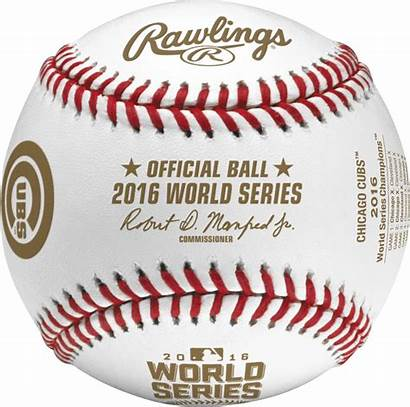 Baseball Series Rawlings Cubs Champs Official Final