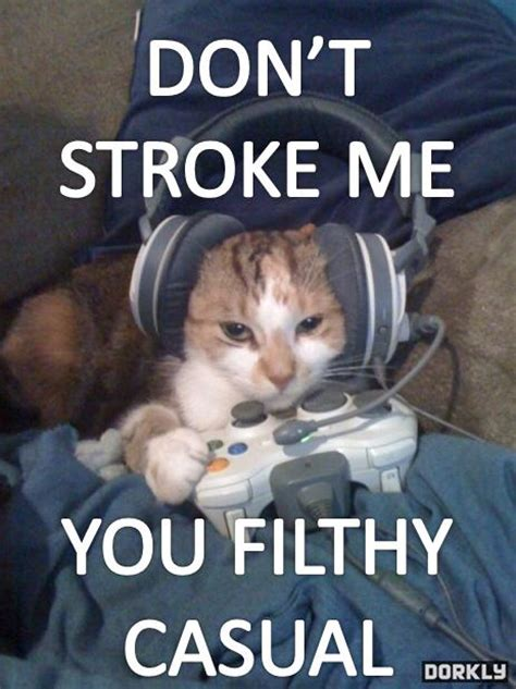 Filthy Friday Memes - cats hate casuals too filthy casual know your meme
