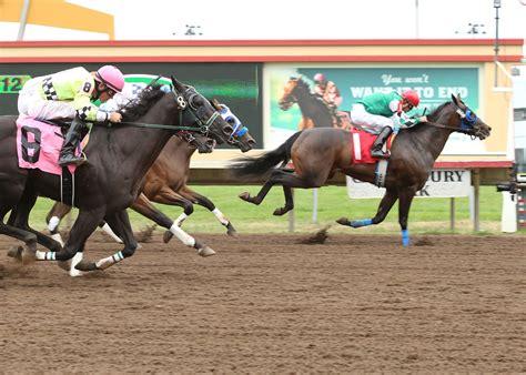 horse quarter racing finish royal seis cash canterbury park stakes results winner jockey