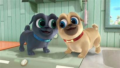 Pals Puppy Dog Mission Going Dvd Movies