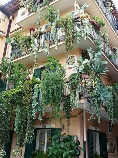Large Hanging L Ikea by Best 25 Balcony Plants Ideas On Balcony