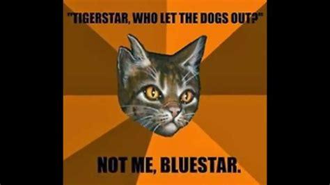 Funny Warrior Cat Quotes  Wwwimgkidcom  The Image Kid