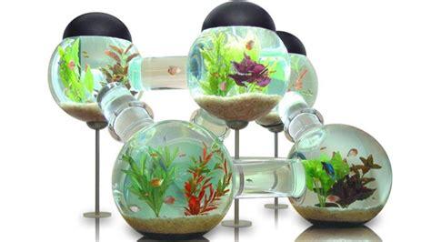 d 233 coration d aquarium pas cher
