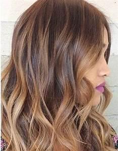 Ombré Hair Chatain : ombr hair noisette ombr hair les plus beaux d grad s ~ Dallasstarsshop.com Idées de Décoration