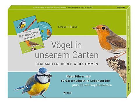 Vögel In Unserem Garten  Beobachten, Hören Und Bestimmen