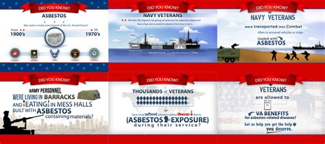 top  infographics  veterans day infographics