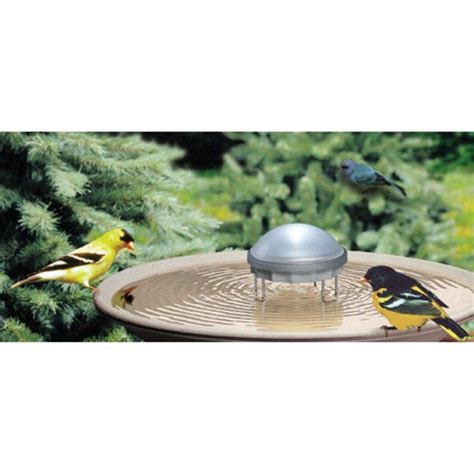 water bird solar wiggler hayneedle