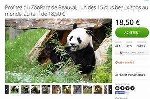 Billet Zoo De Beauval Leclerc : billets prix r duits pour le zooparc de beauval ~ Medecine-chirurgie-esthetiques.com Avis de Voitures