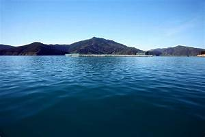 Clear Waters | Global Salmon Initiative
