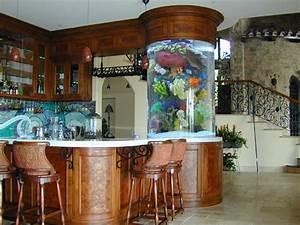 Cool fish tanks on Pinterest   Fish Tanks, Aquarium and ...