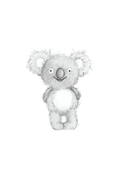 gail yerrill koala sketch  animal illustrations