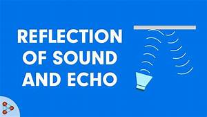 Reflection of sound and echo - CBSE 9 - YouTube