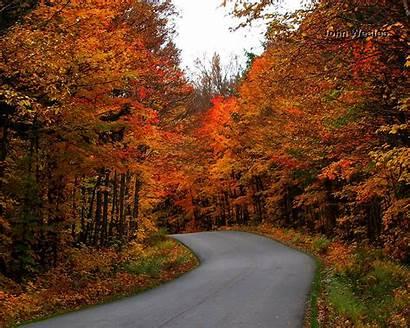 Autumn Canada Fall Path Country Park Desktop