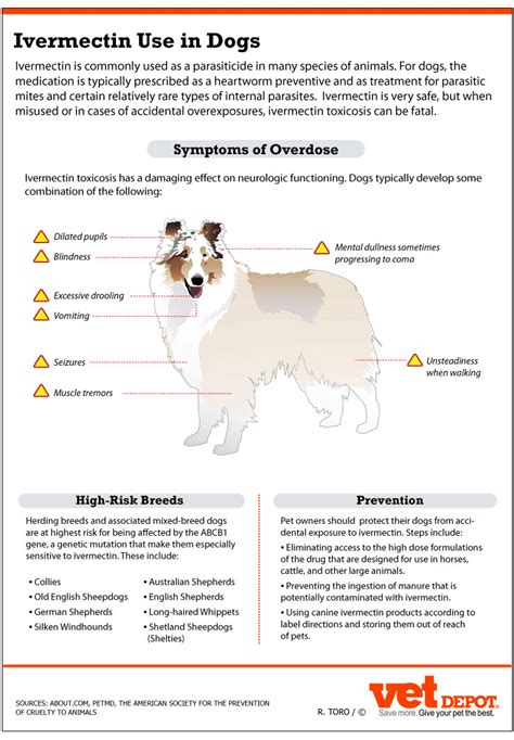 ivermectin for dogs using ivermectin safely in dogs vetdepot com