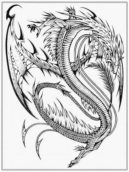 Coloring Dragon Realistic Adults Adult Chinese Popular