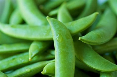 reasons  snap peas   perfect healthy snack
