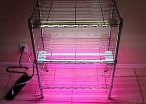 create a diy indoor grow light system garden club