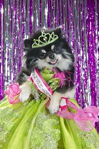 pageants is a thing it 39 s really something