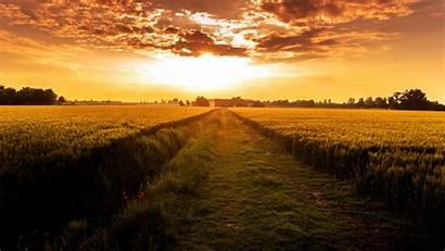 Sunset Field Path 1080p Background Countryside Horizon