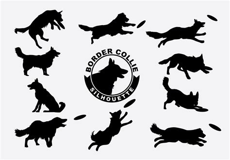 Border Collie Silhouette Vector Download Free Vector Art
