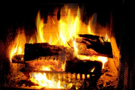 what of wood to burn in fireplace wood burning enviromentally friendly wood stove