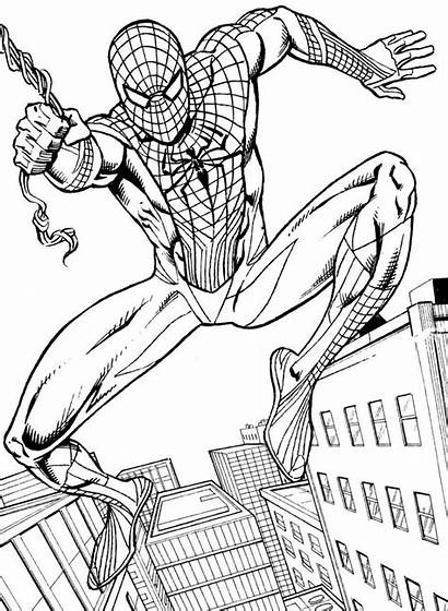 Spiderman Coloring Spider Colorear Printable Dibujos Ausmalbilder