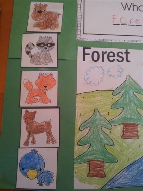 Animal and habitat teaching ideas for pre-k and a freebie!