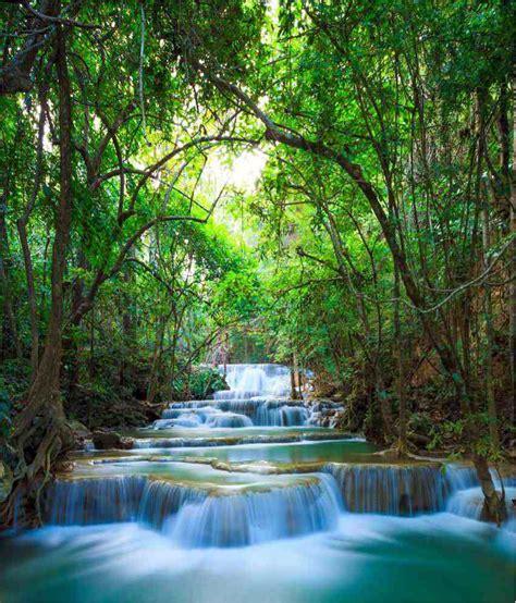 buy wallpaper  waterfall wallpaper    price