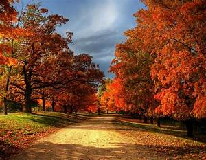 Faith, Hope, U0026, Love, Autumn, Leaves