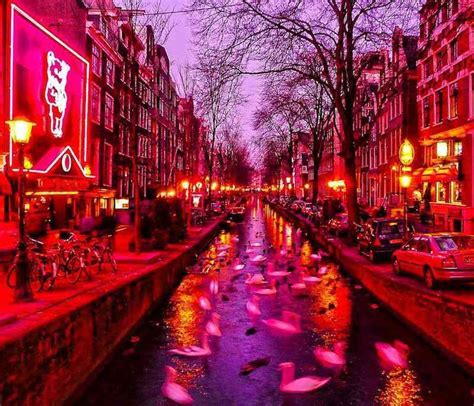Light District follow our amsterdam light district page